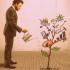 http://zocmarketing.com/wp-content/uploads/2013/09/Growing-Success-Cropped.jpg