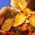 http://www.afrsmartinvestor.com.au/rw/SMI/2014/07/22/Photos/ad68adc4-1153-11e4-9949-30b4695197c6_syd-5plh4ub9cy8lai6k9a0_layout--646x363.jpg